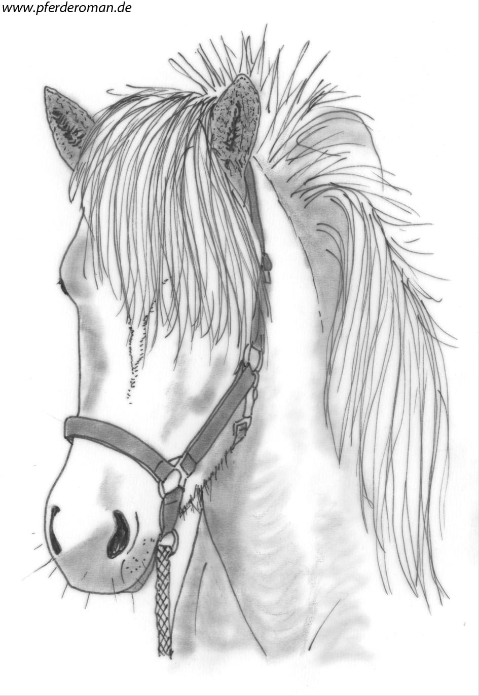 Kostenloste pferdebilder zum ausmalen pferdebilder zum ausmalen thecheapjerseys Images